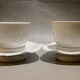 大明成化年制甜白釉脱胎暗刻花鸟纹杯盏两套(非卖品展示)