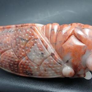 新疆戈壁玉(罕见品种)大金蝉