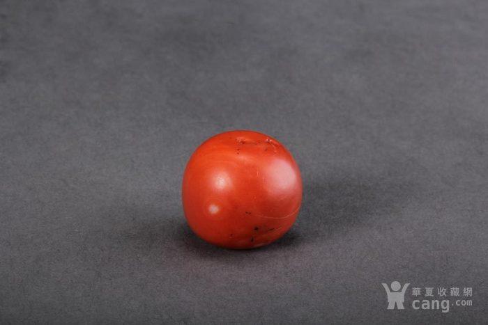 【直径2.0cm珊瑚珠】900/g