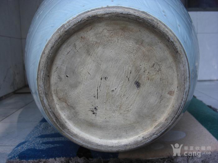 清中期 超大粉青釉缠枝宝相花太白罐 已鉴定图8