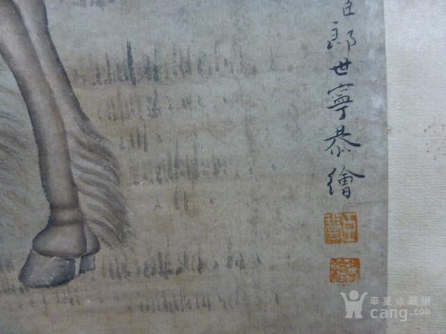 郎世宁八骏图中堂图11