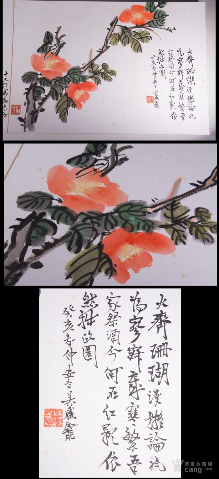 民国--吴昌硕之子--吴藏龛-《画树长春册》图8
