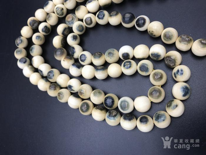 有机宝石猛犸蓝眼纯天然无染色108颗1.0尺寸,价格不高图4