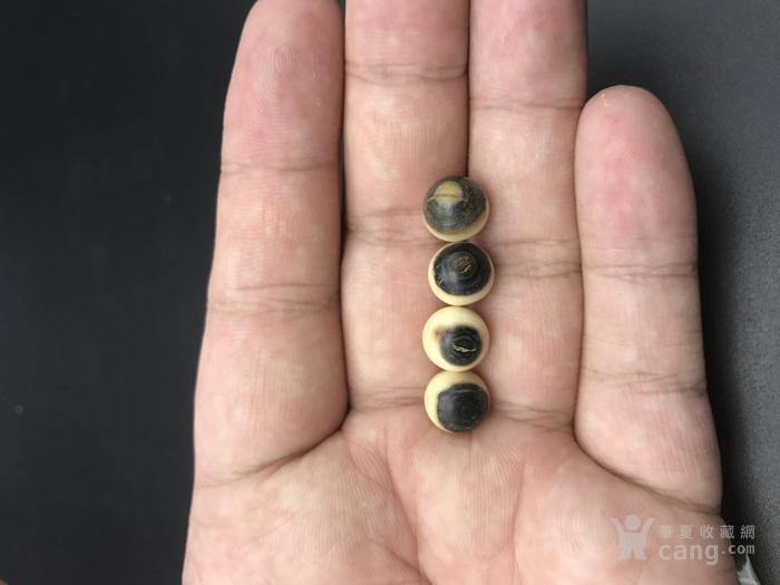 有机宝石猛犸蓝眼纯天然无染色108颗1.0尺寸,价格不高图7