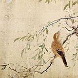 海外代购 清代罗三峰花鸟画