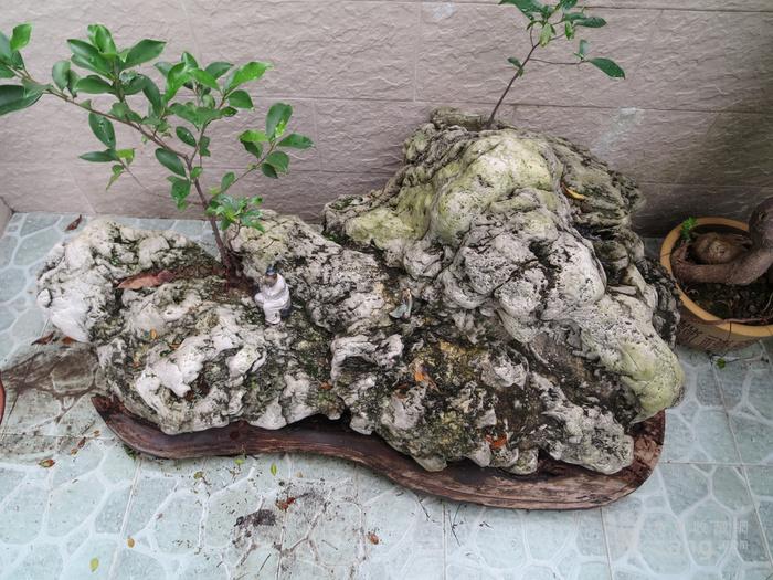 天下奇石,稀世珍品图6