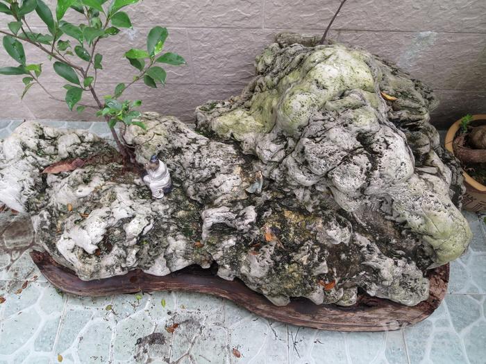 天下奇石,稀世珍品图7