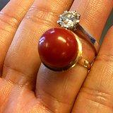 18K金 正圆珠 天然 阿卡 红珊瑚 戒指。不议价。