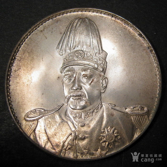 飞龙洪宪纪元银币图2
