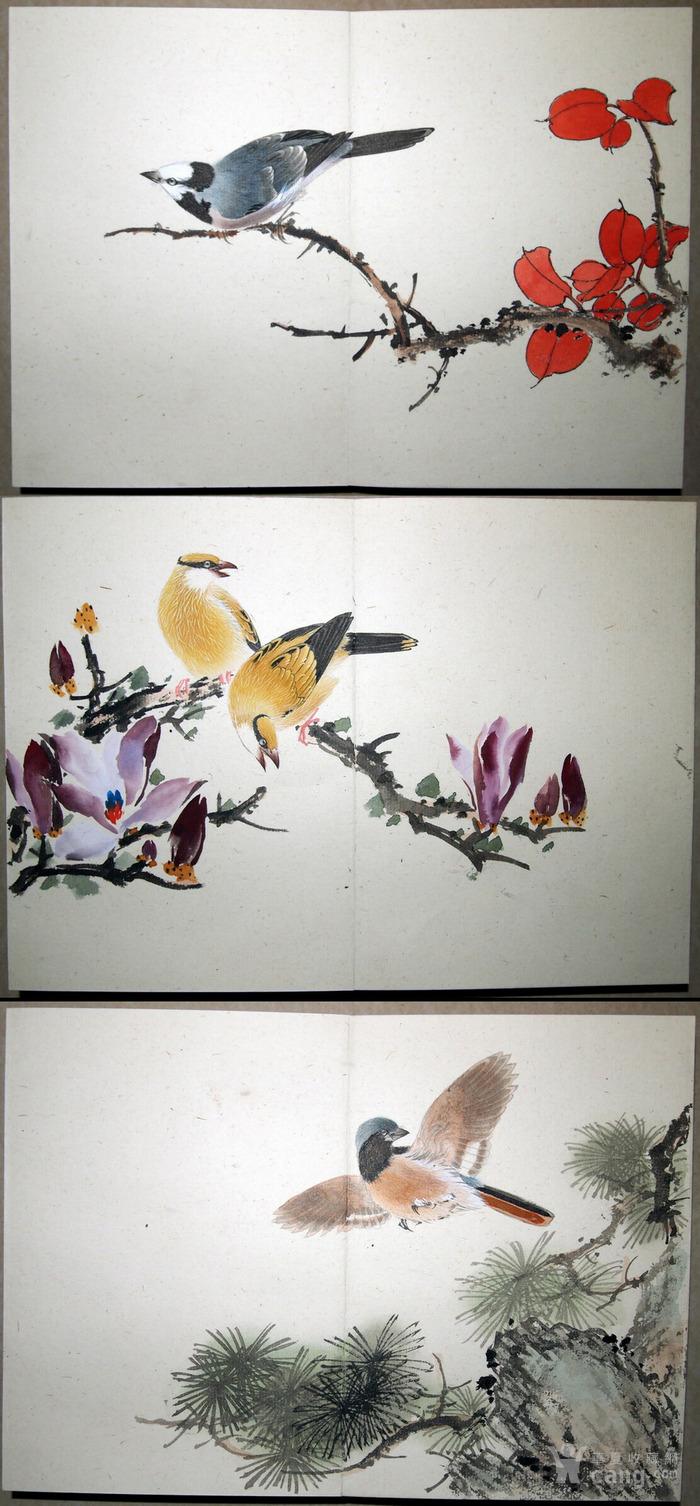 天津名家 郑连群 《花鸟册》图2