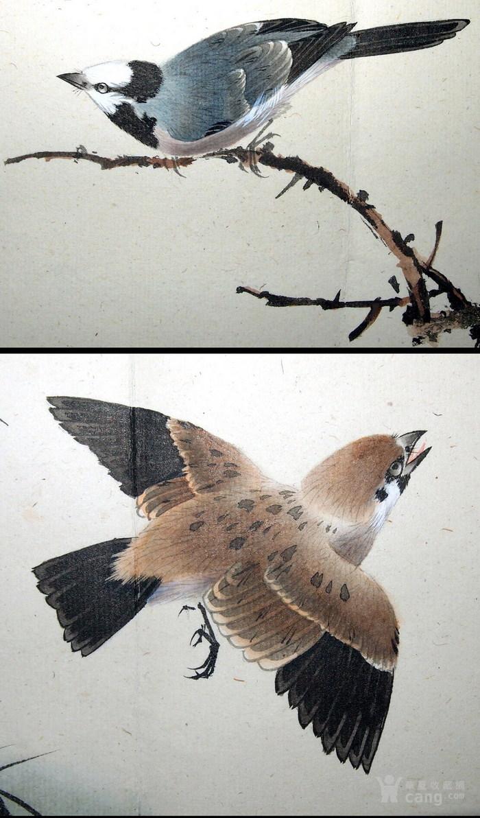 天津名家 郑连群 《花鸟册》图6