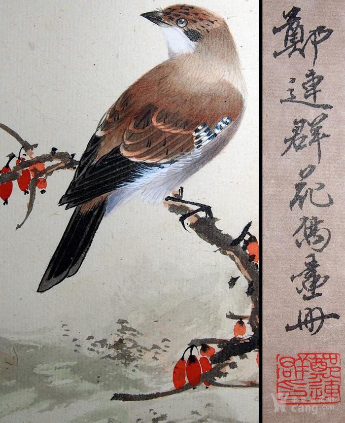 天津名家 郑连群 《花鸟册》图12