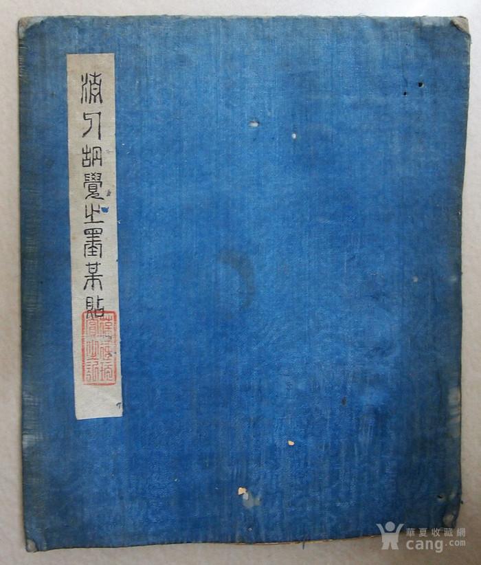 清代 胡寅 觉之 梅花图1
