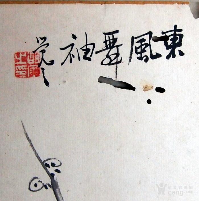 清代 胡寅 觉之 梅花图6