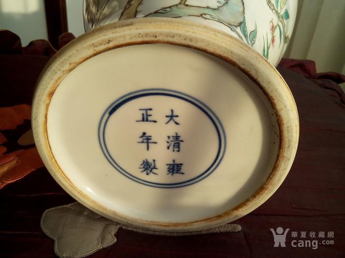大清雍正年制款粉彩九桃橄榄瓶图2