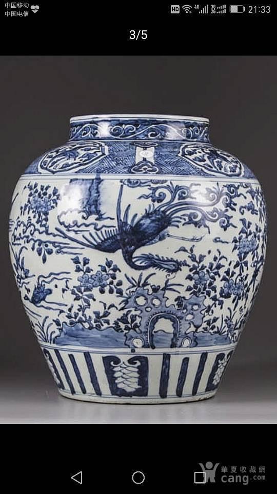 明花卉花鸟纹青花大罐,非卖品,供观赏图8