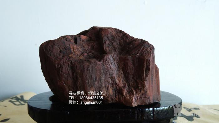 硅化木 树化石 树化玉   红玉图2