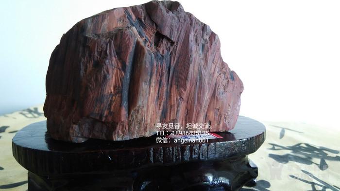 硅化木 树化石 树化玉   红玉图5