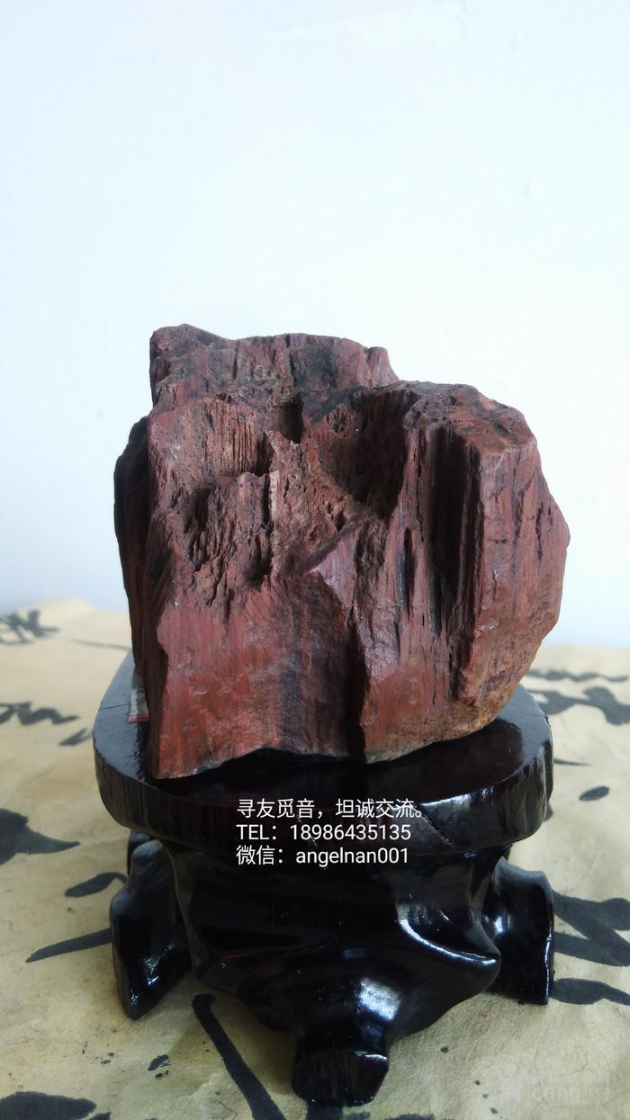 硅化木 树化石 树化玉   红玉图6