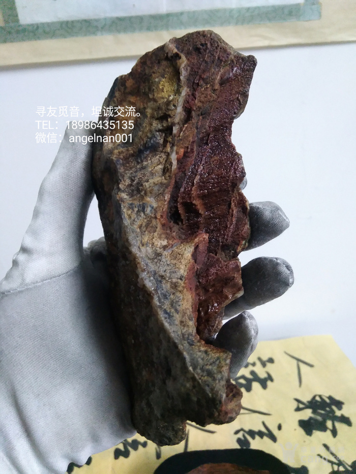 硅化木 树化石 树化玉景观原石图11