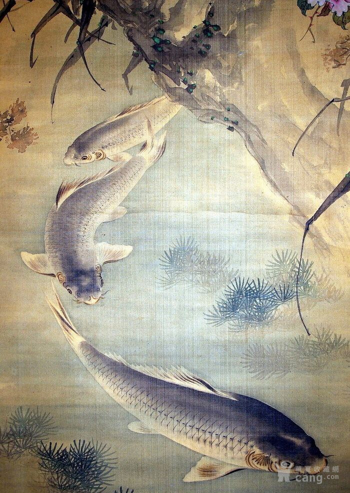 清代  张莘  绢本《花猫逐鲤图》图5