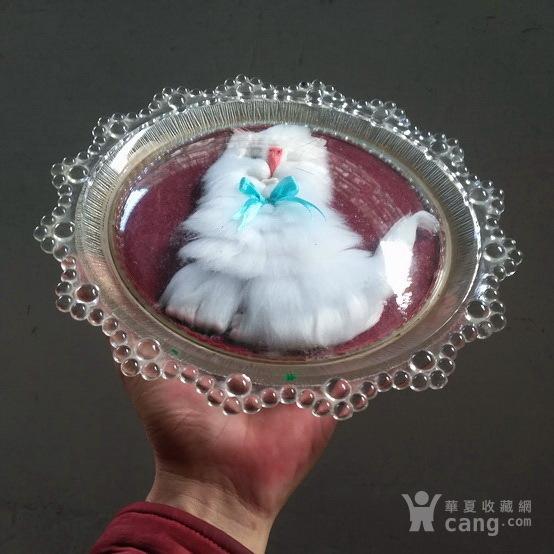 漂亮,小白猫 绒制琉璃摆盘图2