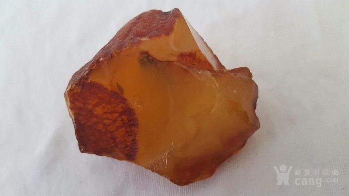 原矿鸡油黄蜜蜡原石52.7克 谢绝大幅议价图1