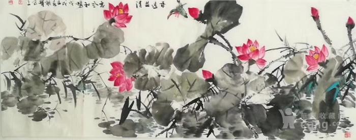 甘肃美协杨朝晖  183 小六尺花鸟牡丹图11