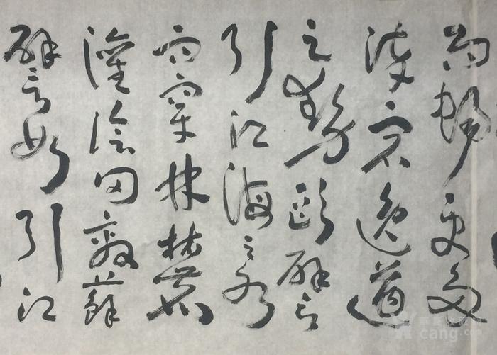 草书长卷图5