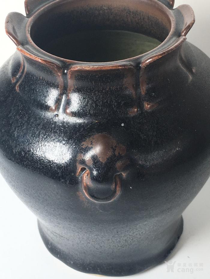 黑鲉罐图6