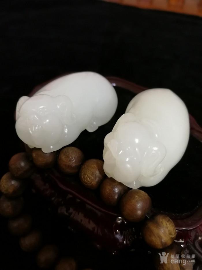 新品和田玉羊脂白玉籽料可爱立体小猪一对挂件吊坠苏工图3