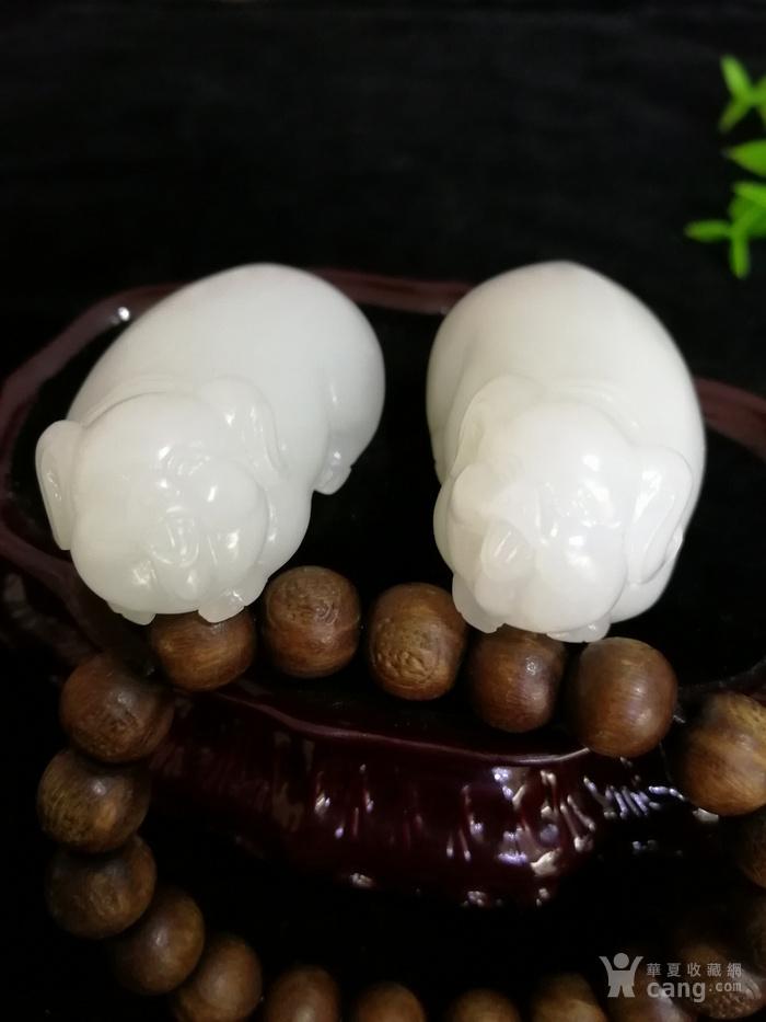 新品和田玉羊脂白玉籽料可爱立体小猪一对挂件吊坠苏工图4