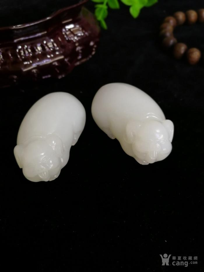 新品和田玉羊脂白玉籽料可爱立体小猪一对挂件吊坠苏工图6