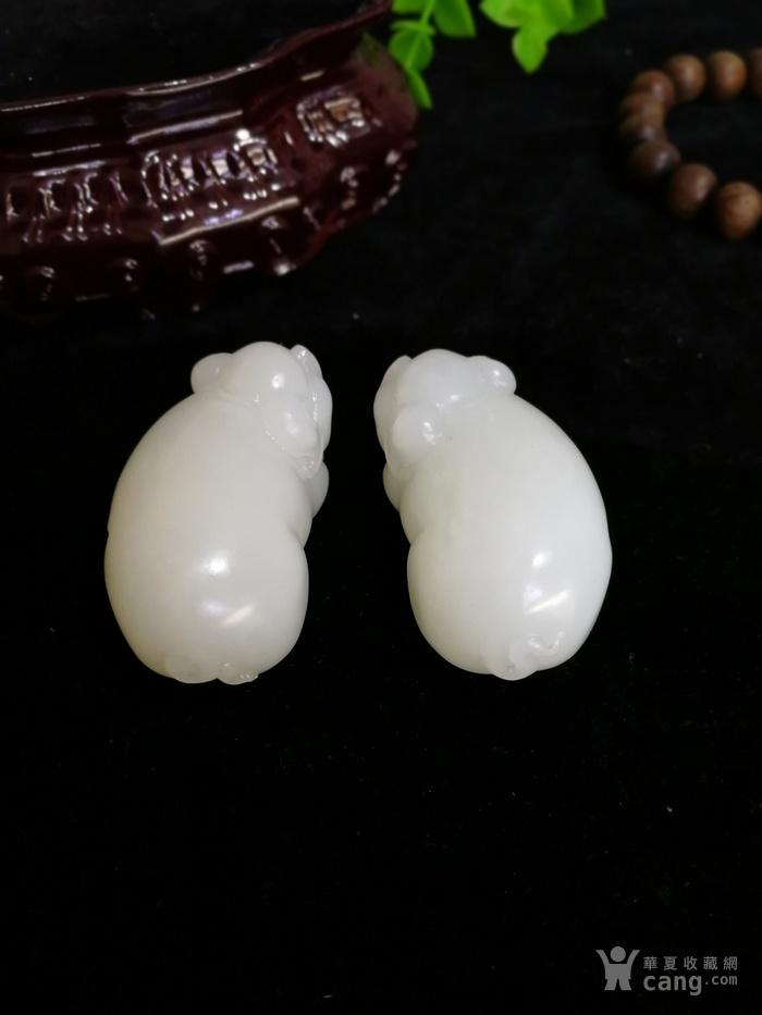 新品和田玉羊脂白玉籽料可爱立体小猪一对挂件吊坠苏工图8