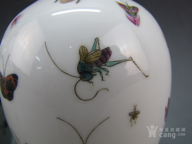 清代珐琅彩昆虫纹赏瓶一对图3