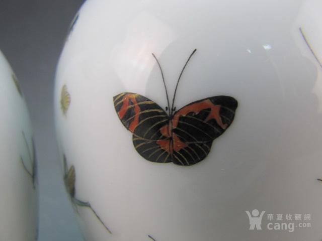 清代珐琅彩昆虫纹赏瓶一对图4