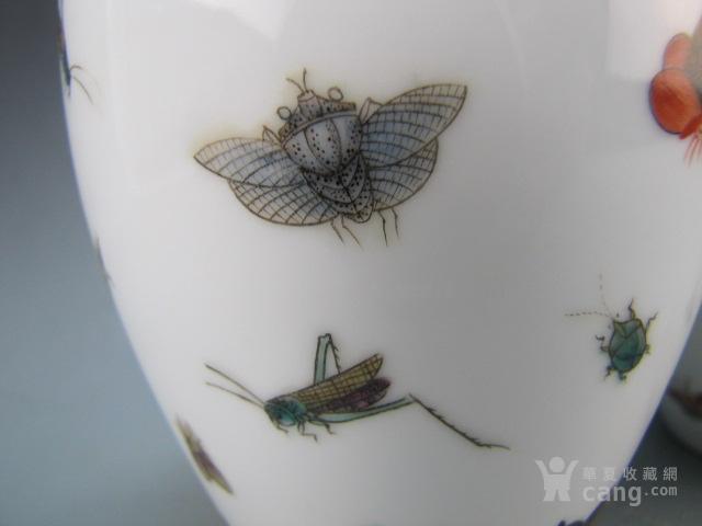 清代珐琅彩昆虫纹赏瓶一对图5