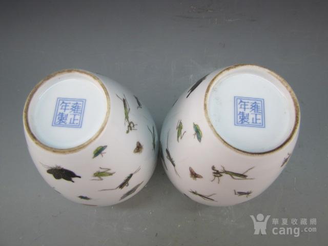清代珐琅彩昆虫纹赏瓶一对图9