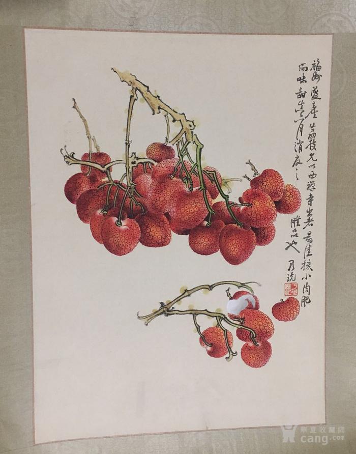 郑乃珖  工笔花卉静物   斗方镜片 画的跟真的一样图3