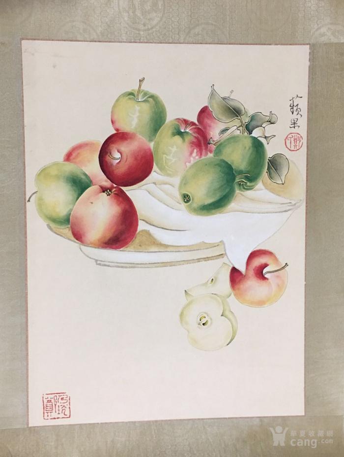郑乃珖  工笔花卉静物   斗方镜片 画的跟真的一样图5