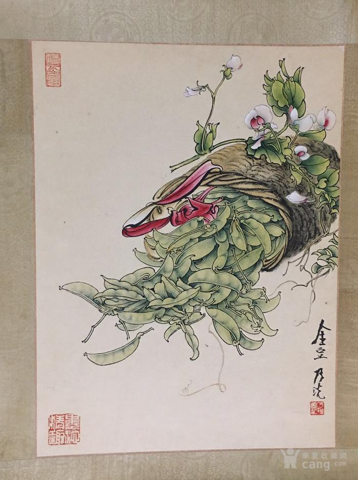 郑乃珖  工笔花卉静物   斗方镜片 画的跟真的一样图7