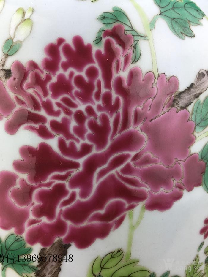 清代中期粉彩花卉瓶一件包老图5