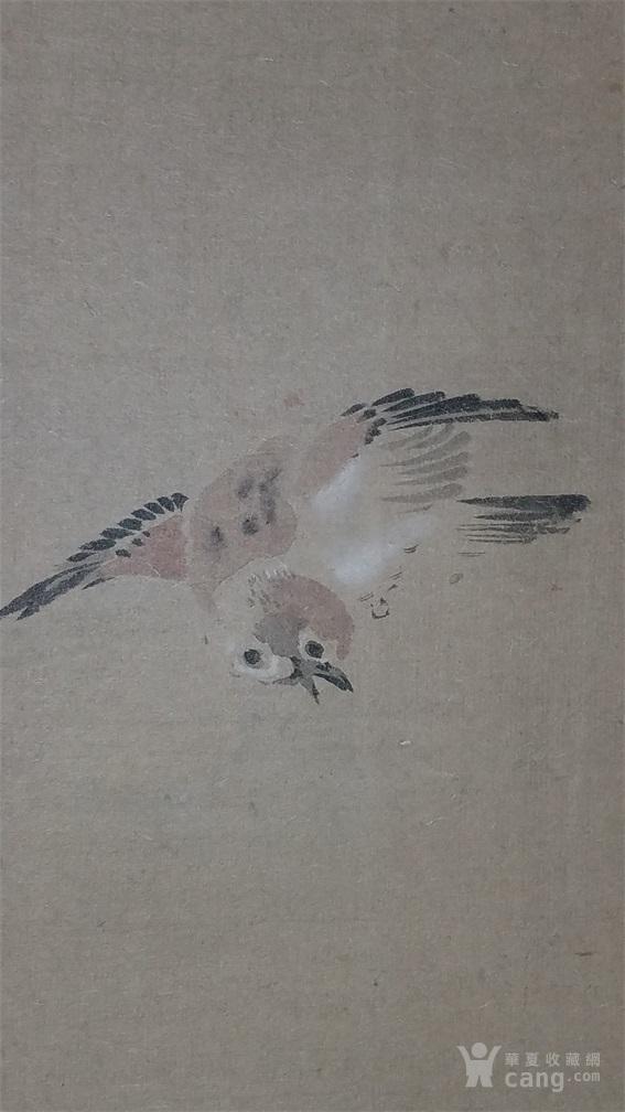 高剑父  花鸟图4