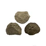 4337 奇石陨石