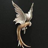 鹦鹉老银胸针