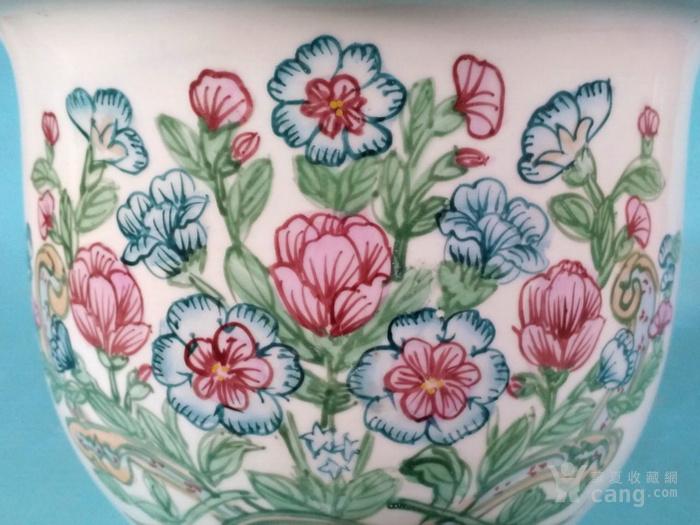 超美,春花簇簇花盆图9