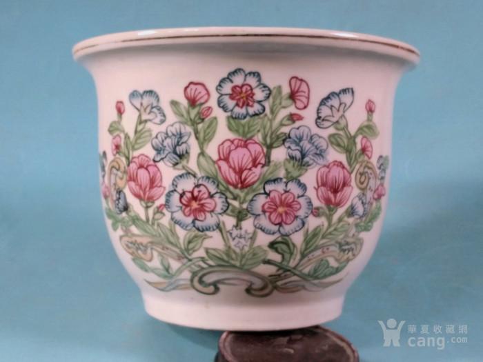 超美,春花簇簇花盆图10