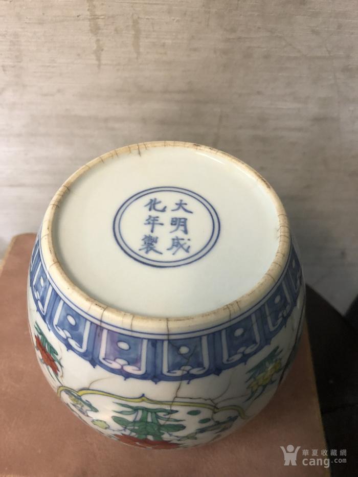 成化斗彩花神罐图9