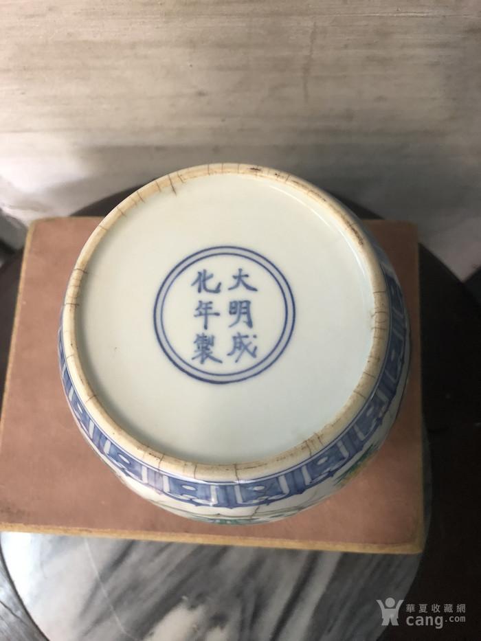 成化斗彩花神罐图11