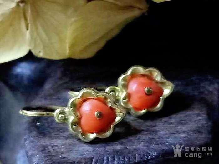 德回流1900年天然沙丁红珊瑚镶嵌耳环 新年价 原价598图8